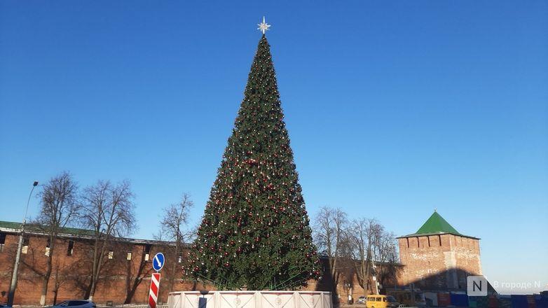 Главную городскую елку нарядили в Нижнем Новгороде - фото 1