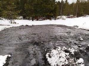 Виновные в загрязнении земли нефтепродуктами в Дзержинске не смогли избежать штрафов