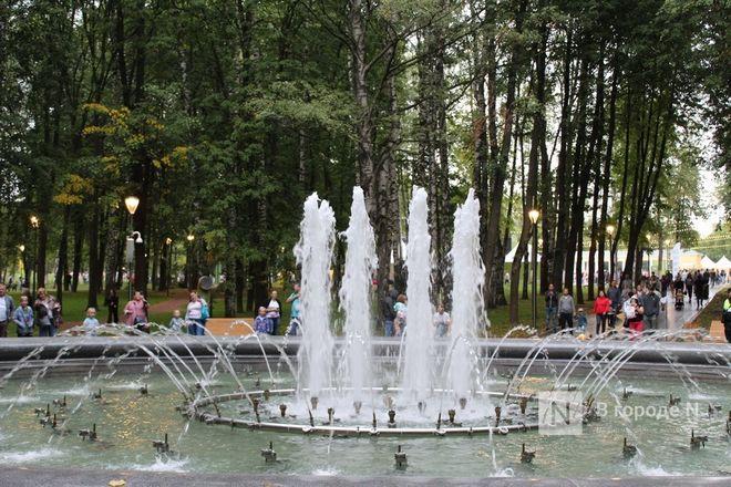 52 гектара для отдыха: Как изменился парк «Швейцария» - фото 97