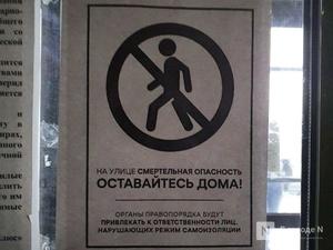 Более 3,5 тысяч протоколов на нарушителей самоизоляции составили в Нижегородской области