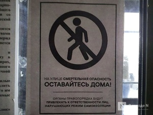 Еще 20 нижегородцев привлекли к ответственности за нарушение самоизоляции 29 апреля