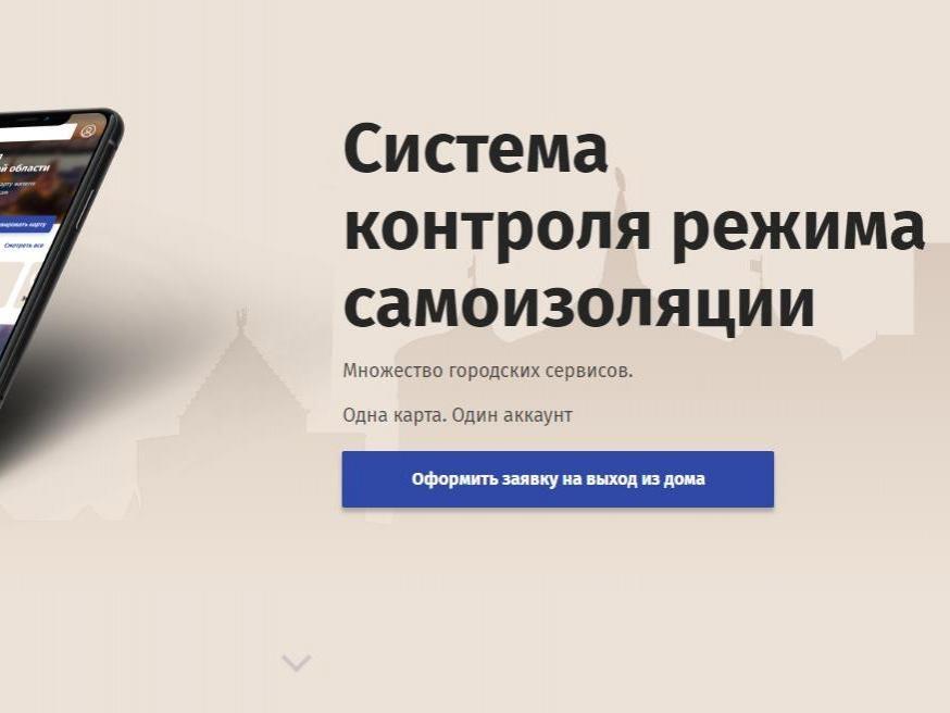 Полная самоизоляция: нижегородцы смогут выходить на улицу по QR-коду - фото 1