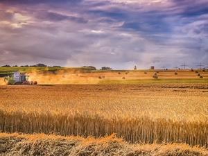 На развитие сельских территорий Нижегородской области направят около 400 млн рублей