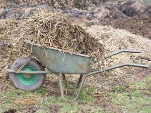 Колхоз в Нижегородской области заплатит за свалку навоза