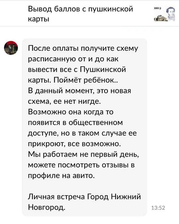 Нижегородцам предлагают помощь с выводом денег с Пушкинской карты - фото 2