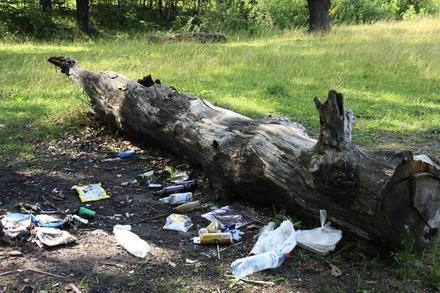 Нижегородцы очистят от мусора Копосовскую дубраву