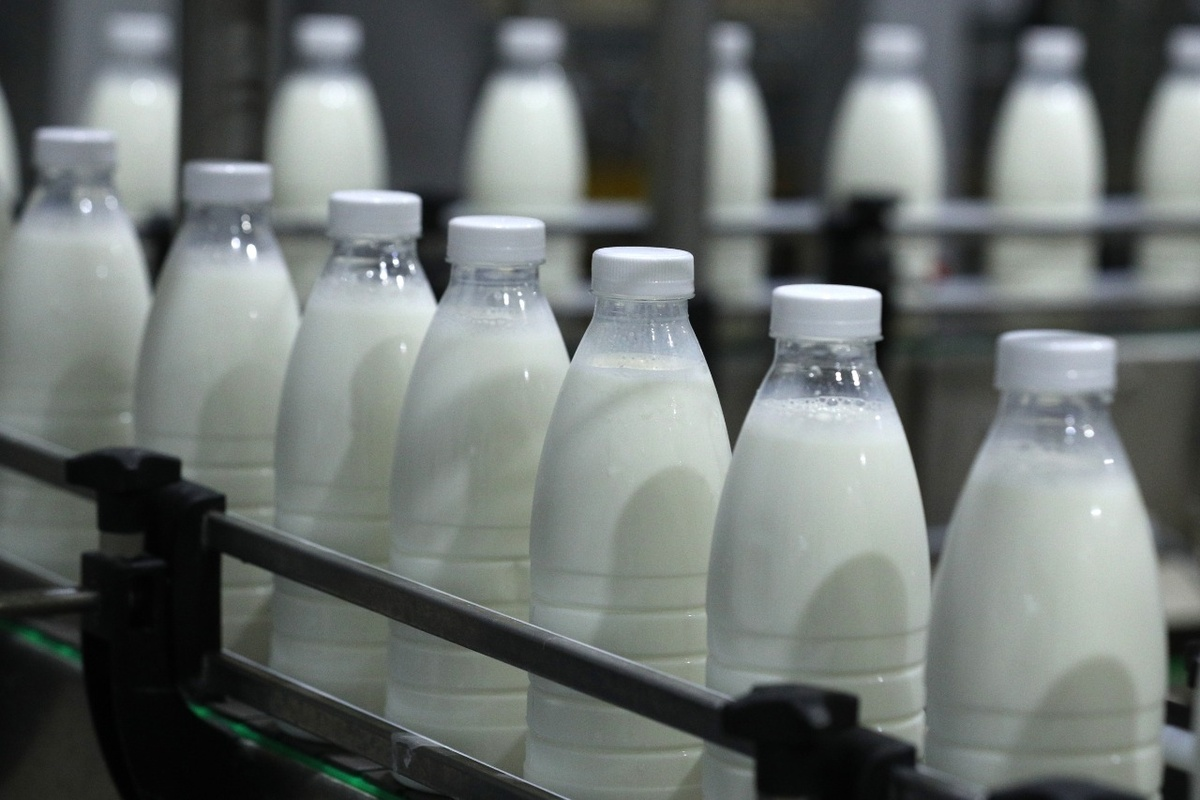 На 4% увеличилось производство молока в Нижегородской области - фото 1