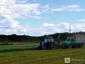 Начинающие нижегородские фермеры смогут получить гранты до 6 млн рублей