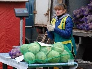 Капуста, яйца и рис подешевели в Нижегородской области