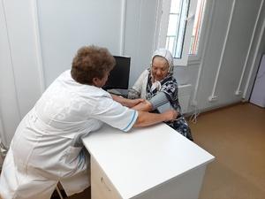 Полтора миллиона рублей получат медики за работу в нижегородской глубинке