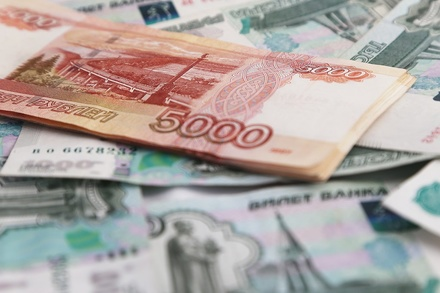 Дума Нижнего Новгорода согласовала изменения в бюджет