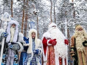 14 Дедов Морозов со всей России приедут в Нижний Новгород