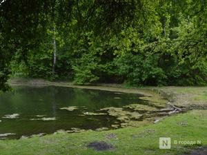 Нижегородцев предлагают привлечь к охране рек и озер
