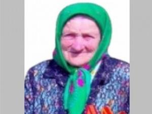 93-летняя бабушка заблудилась в ардатовском лесу