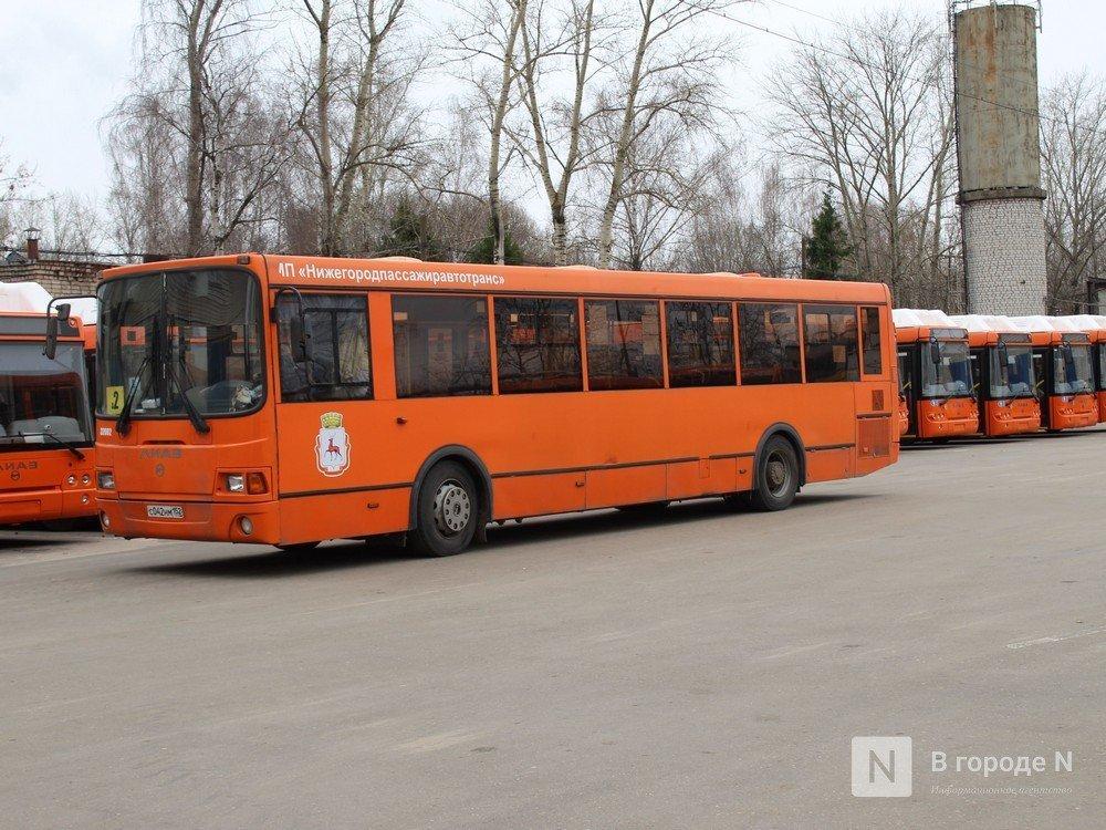 Стало известно, на какие нижегородские маршруты выйдут новые автобусы - фото 1