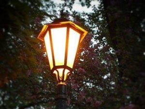 Проблемы с уличным освещением в Нижнем Новгороде будут решены в течение недели