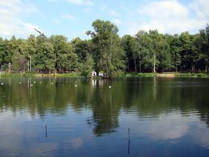 В Нижнем Новгороде можно будет купить часть острова в Сормовском парке