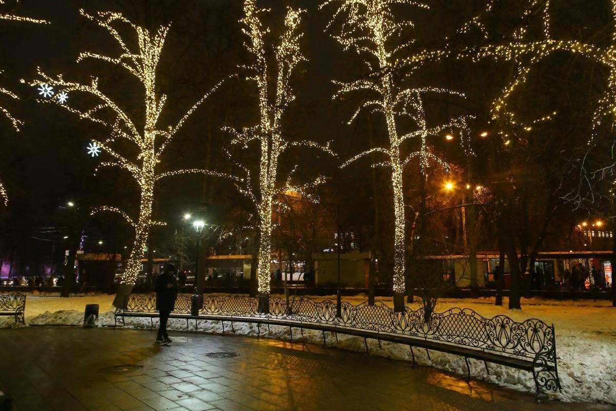 Сказочный лес появился вокруг главного фонтана Нижнего Новгорода - фото 1