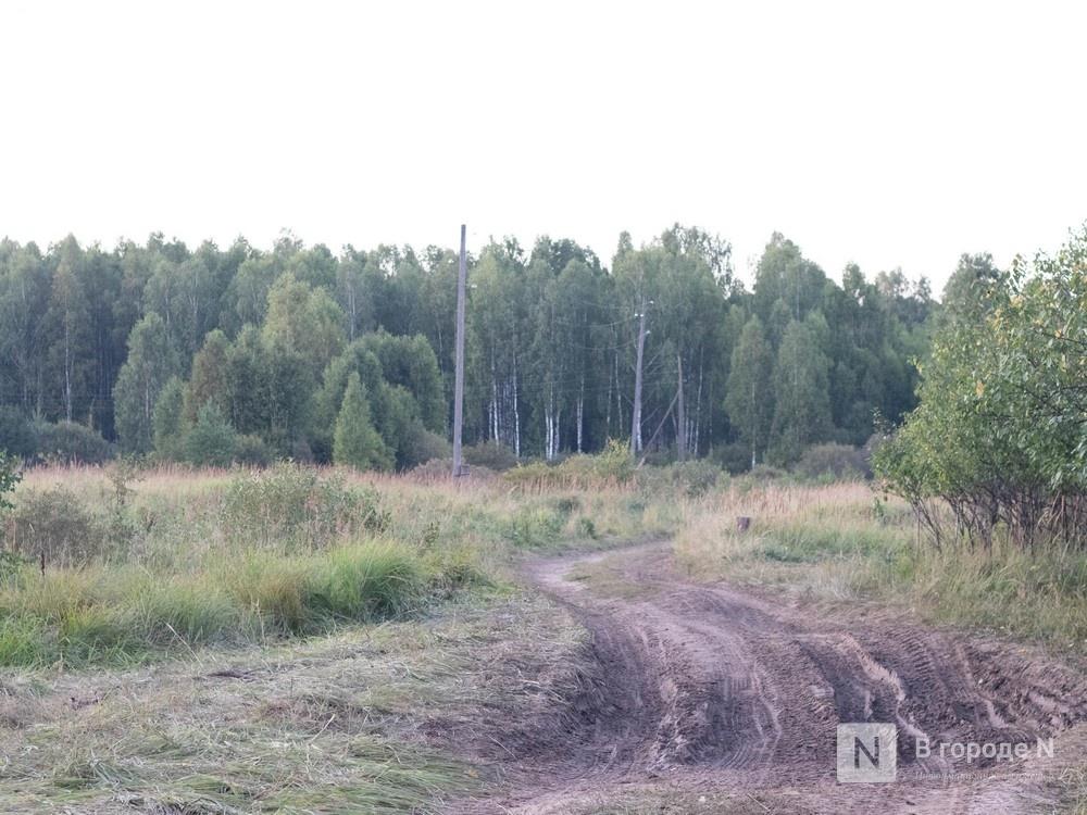 Сезон охоты на пернатую дичь стартовал в Нижегородской области - фото 1