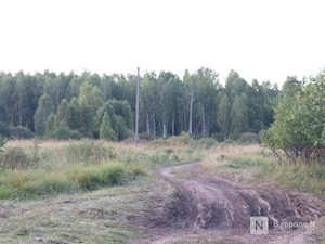 Сезон охоты на пернатую дичь стартовал в Нижегородской области