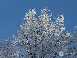 Морозы до -20°C придут в Нижний Новгород в выходные