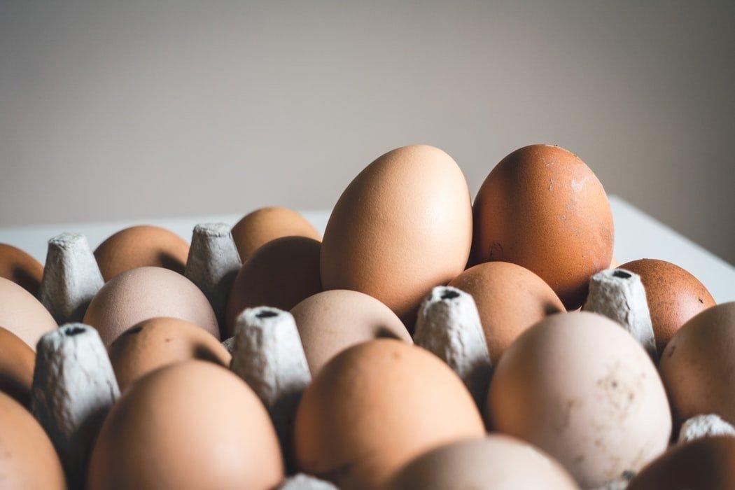 Сеймовскую птицефабрику оштрафовали за незаконные условия труда и отдыха - фото 1