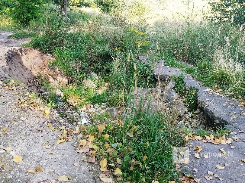 Благоустройство Лопатинского оврага планируется завершить в начале сентября - фото 5